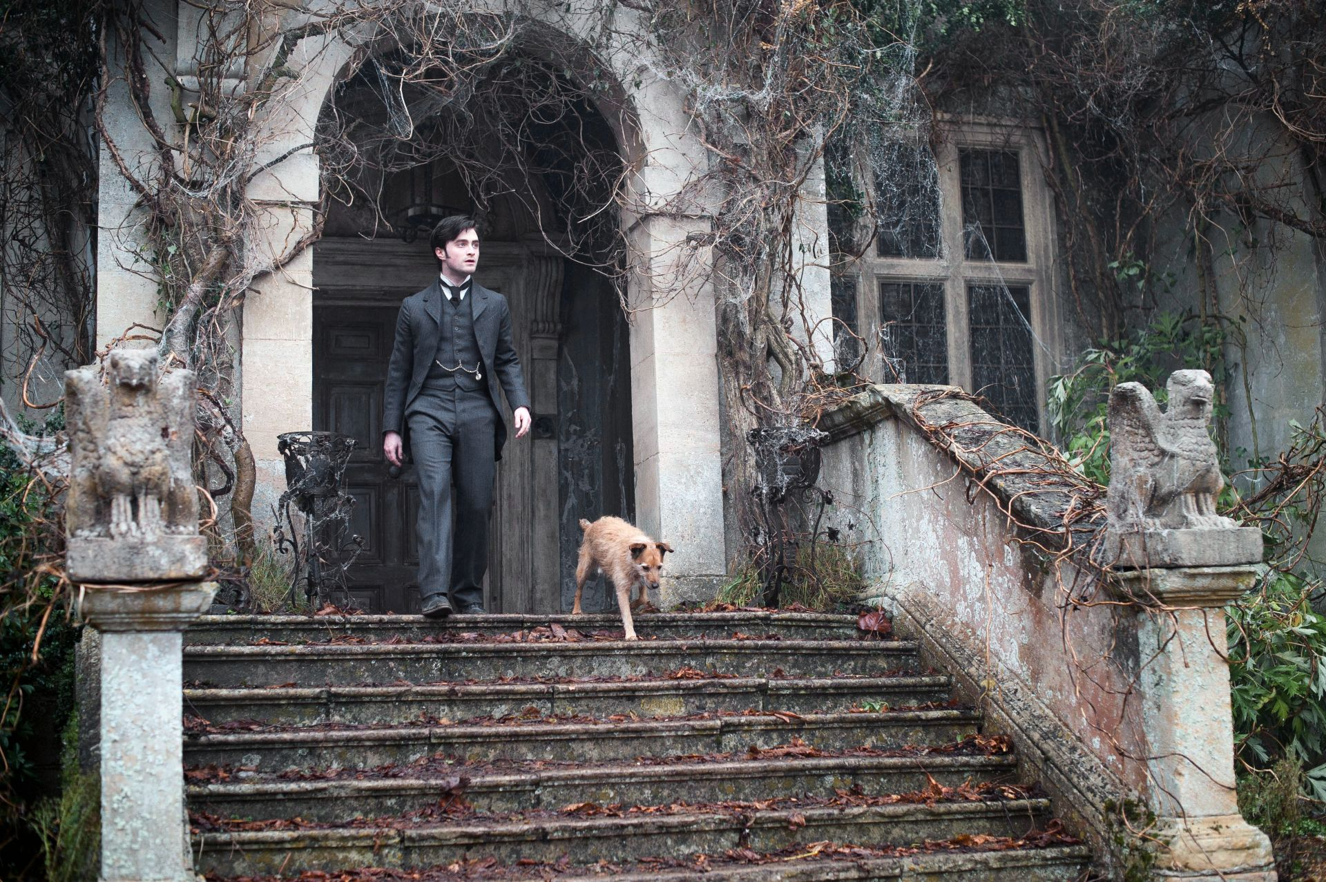 the-woman-in-black-daniel-radcliffe-dog-harry-potter – film i väst en